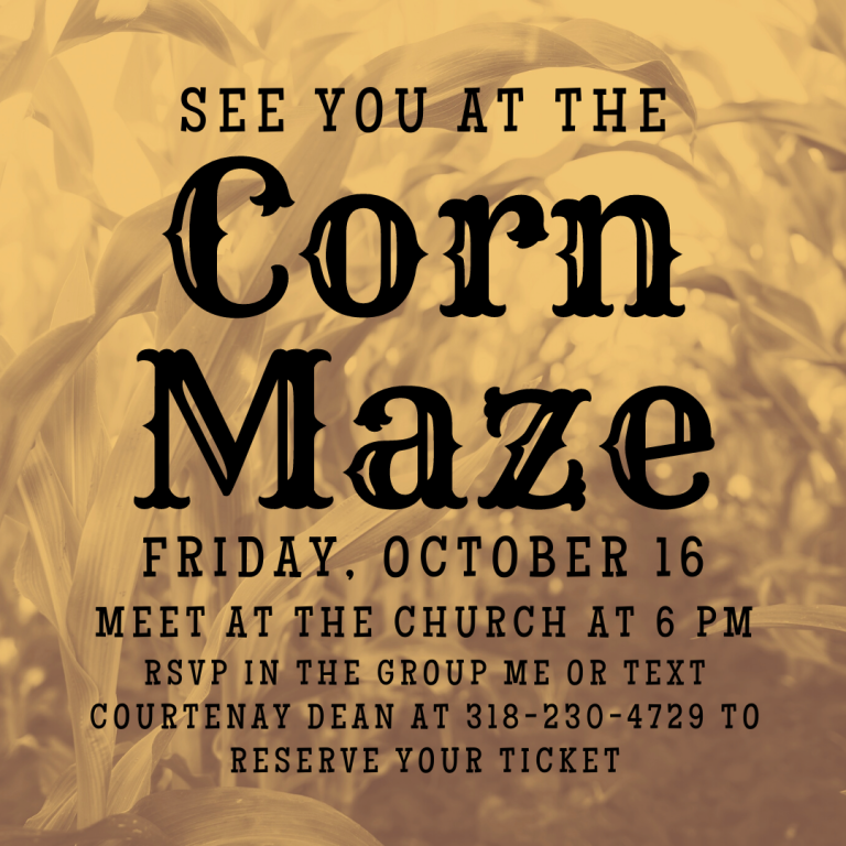 Corn Maze - Young Adult