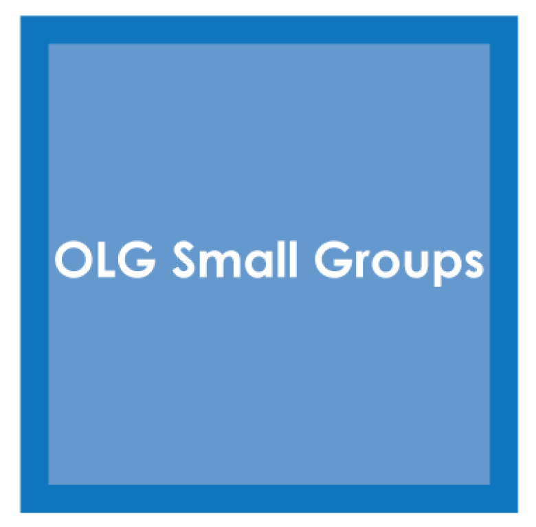 OLG Small Groups