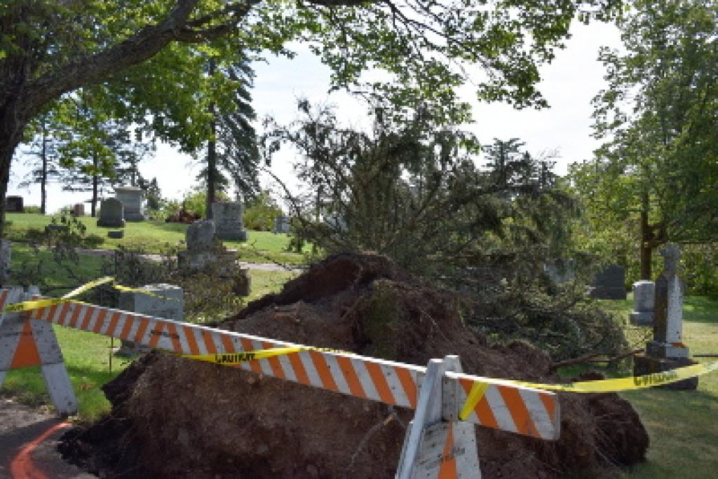 Calvary Cemetery damage