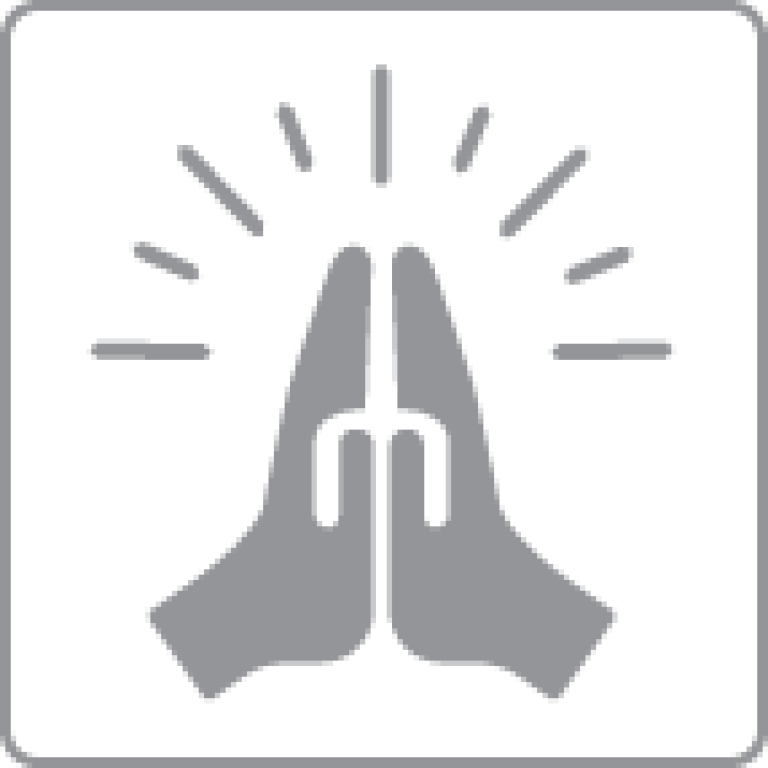 Praying Hands Icon