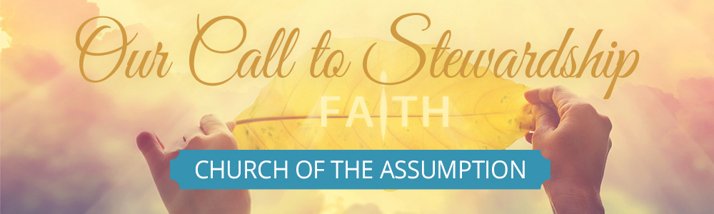 Our Call to Stewardship