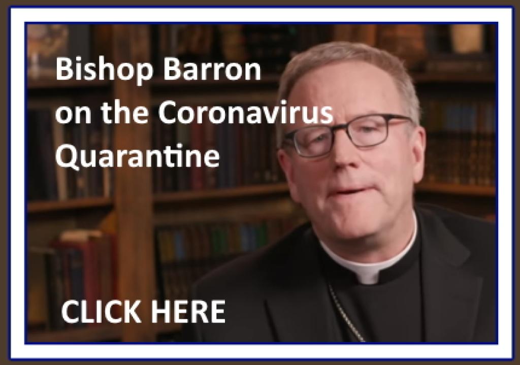 Bishop Barron on Quarantine