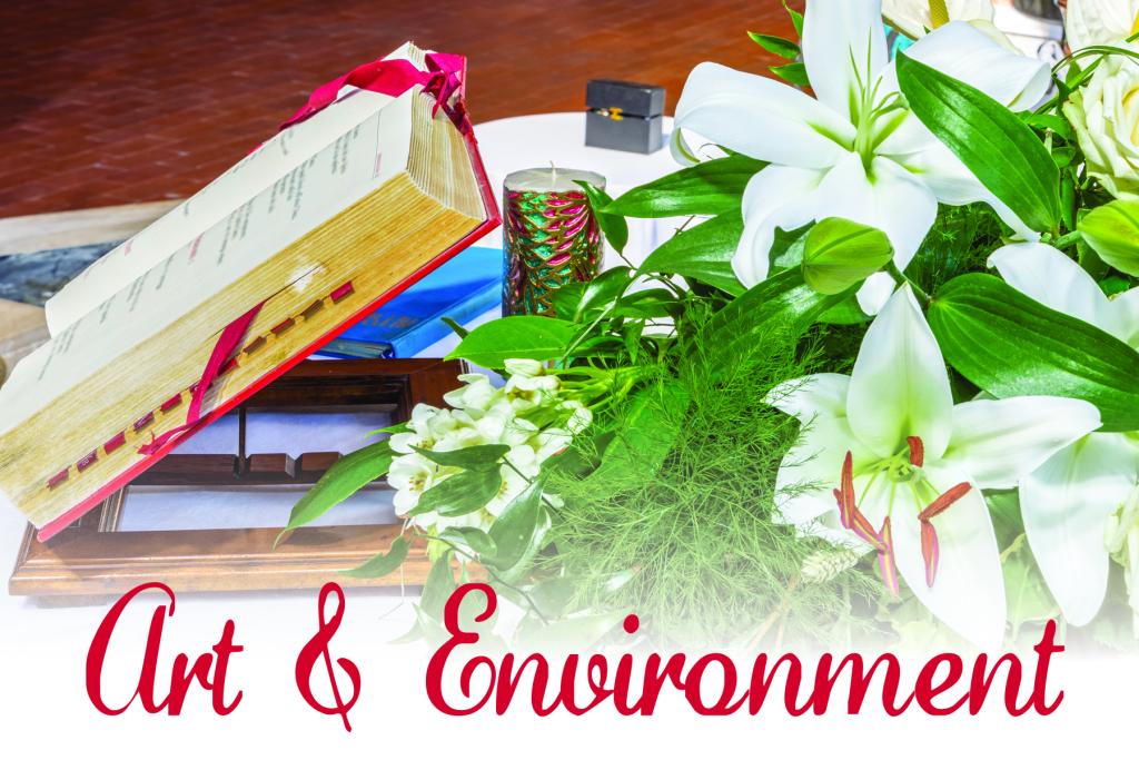Art & Environment