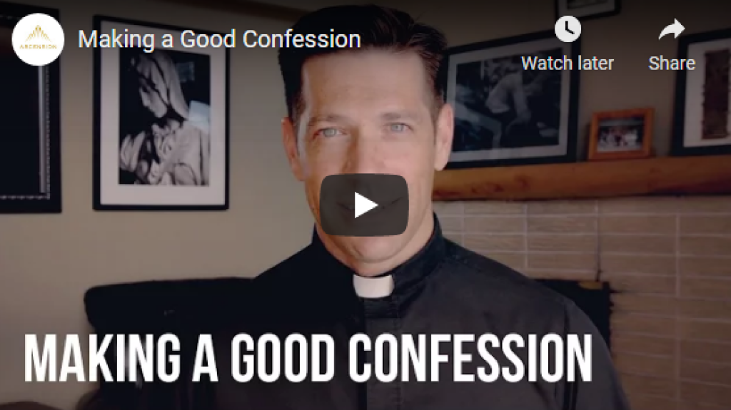 making a good confession by fr mike