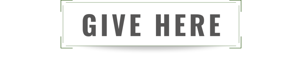 online giving, give here