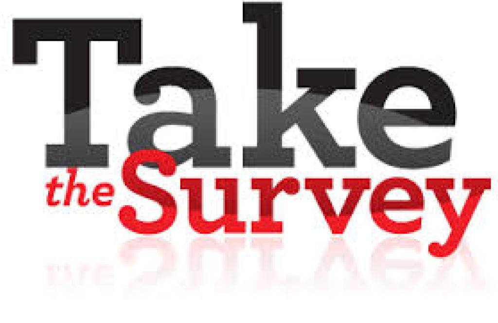Catechist Survey