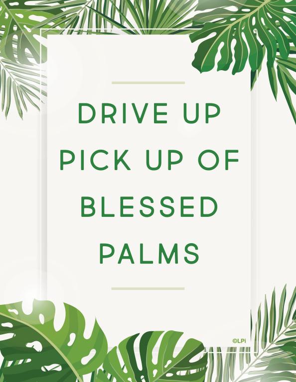 Drive Up Pick Up Palms
