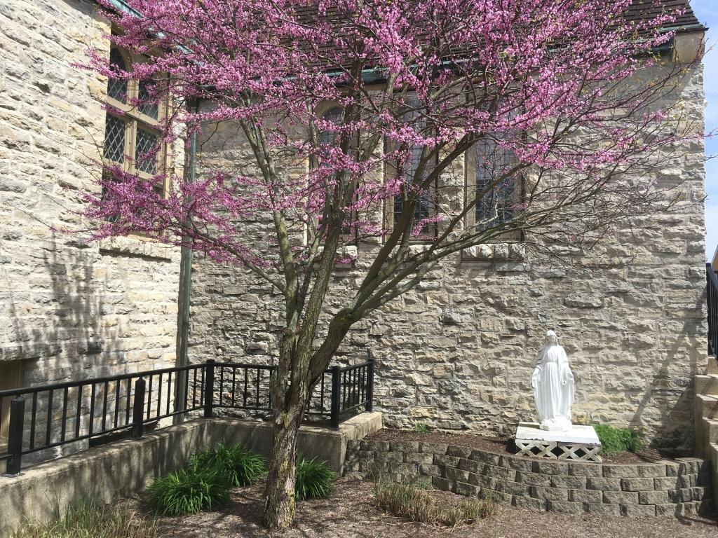 SPP Mary Statue
