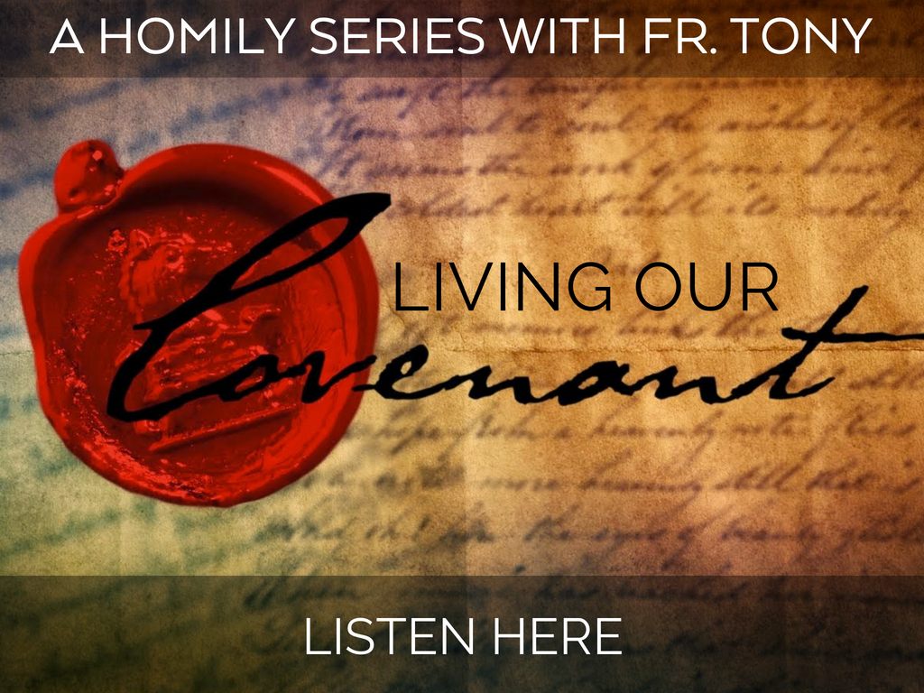 Listen to Fr. Tony's Homily Series