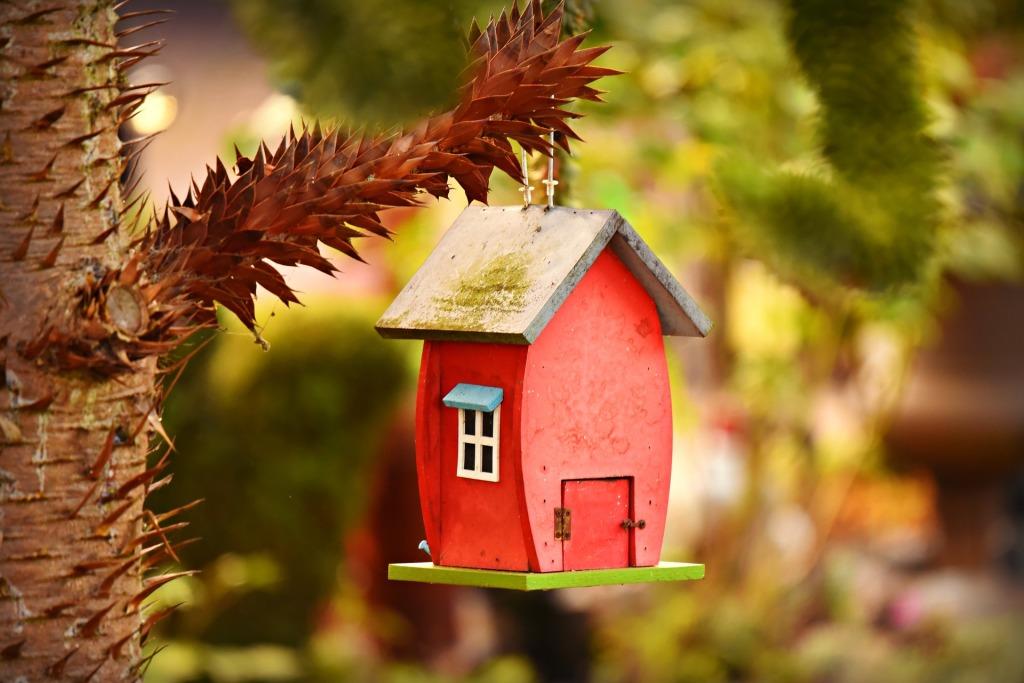 Birdhouse Build - Habitat for Humanity