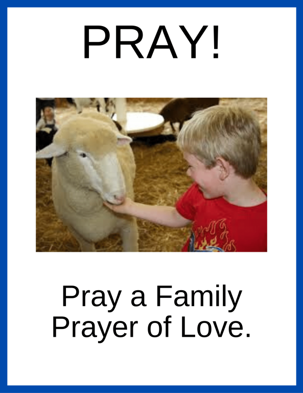 Pray a Family Prayer of Love