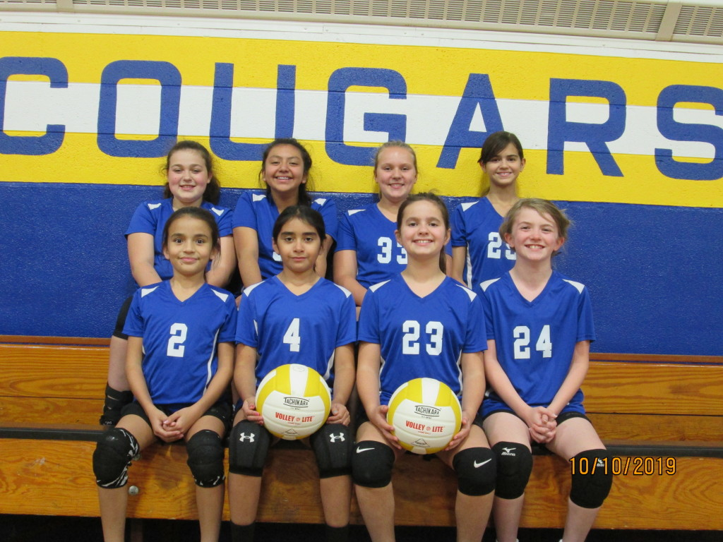 Grades 5 & 6 Volleyball