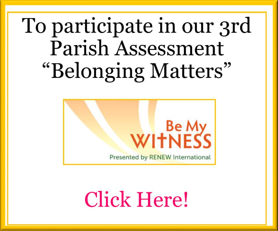 belonging matters