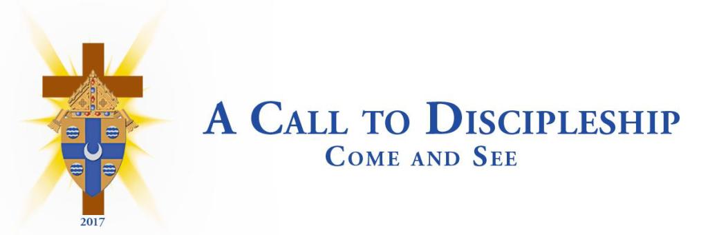 Diocesan Synod header