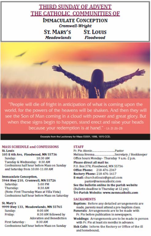 November 25 Bulletin