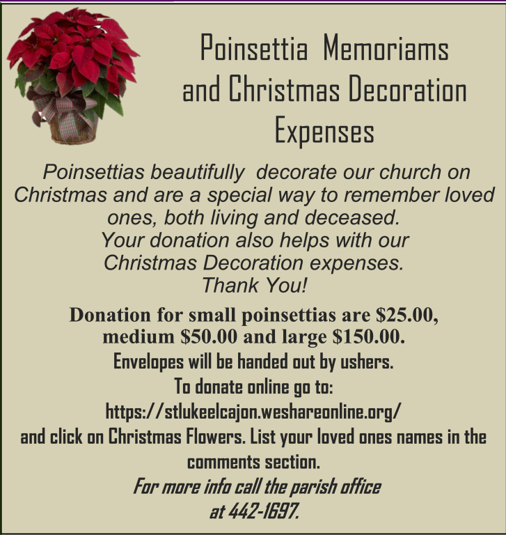 Donate to the Christmas flowers expenses