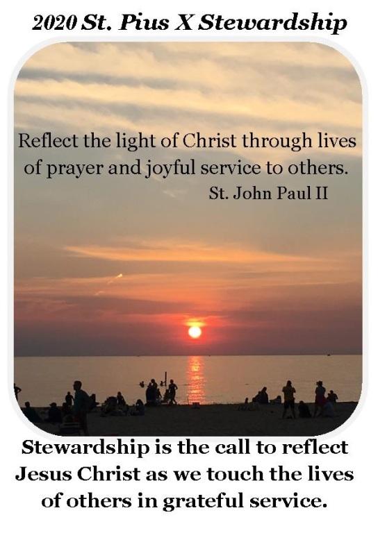 2020 Stewardship