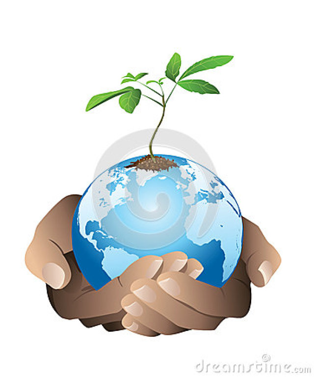 Environmental Stewardship Group | St  John Bosco Parish