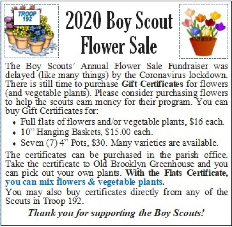 BSA Flower GCert Sale