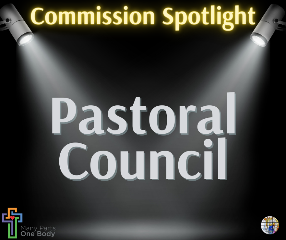 Commission Spotlight